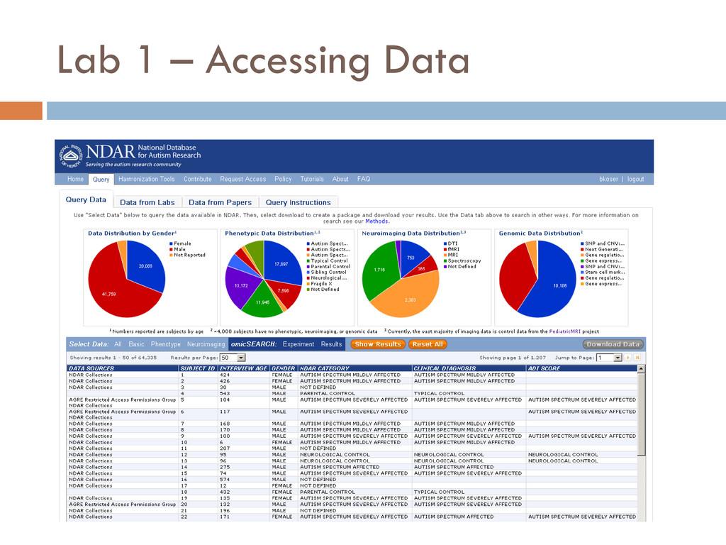 Lab 1 – Accessing Data