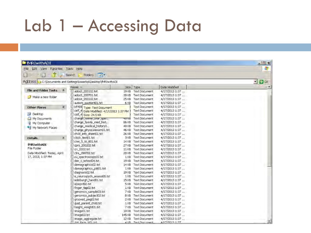 Lab 1 – Accessing Data