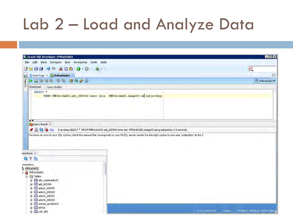 Lab 2 – Load and Analyze Data