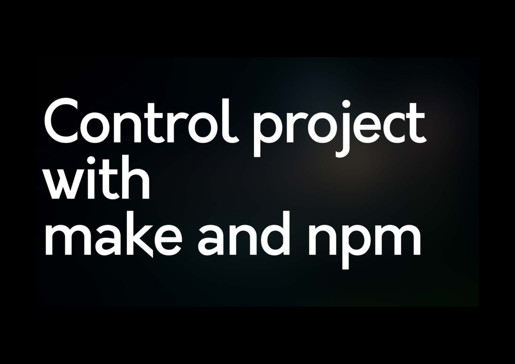 Control project with make and npm
