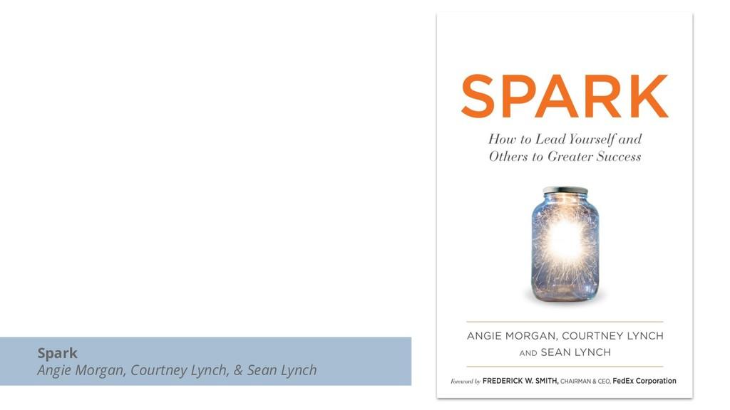 Spark Angie Morgan, Courtney Lynch, & Sean Lynch