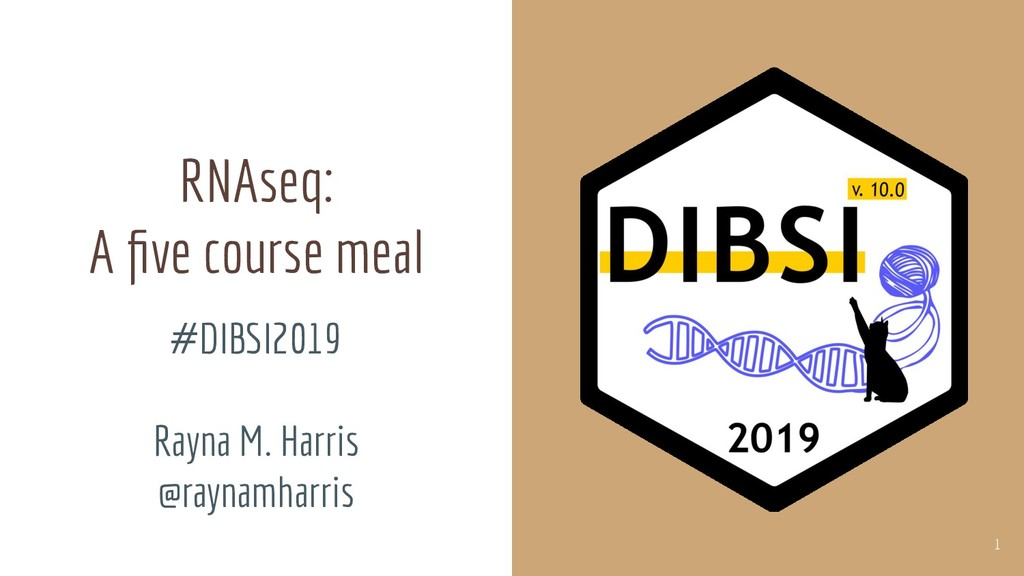 RNAseq: A five course meal #DIBSI2019 Rayna M. H...