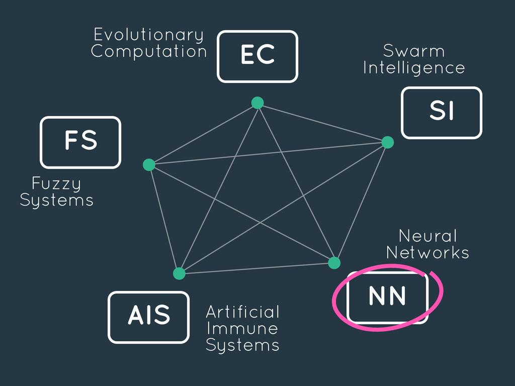 EC FS SI AIS NN Evolutionary Computation Swarm ...