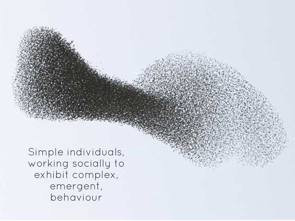 Simple individuals, working socially to exhibit...