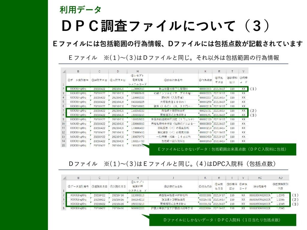 Eファイル ※(1)~(3)はDファイルと同じ。それ以外は包括範囲の行為情報 Eファイルには包...