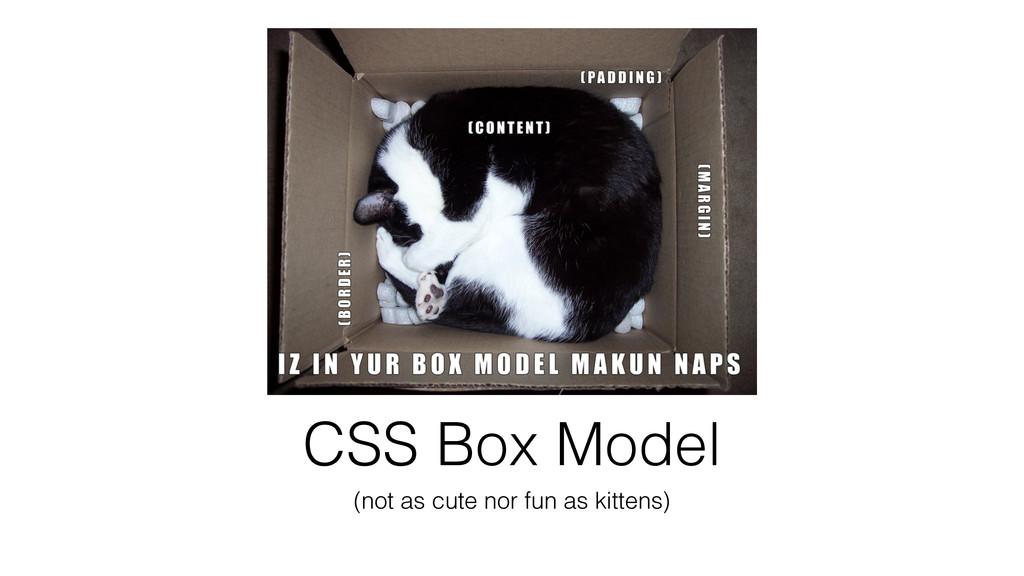 CSS Box Model (not as cute nor fun as kittens)