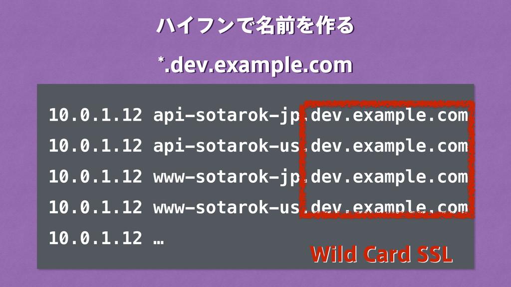 ϋΠϑϯͰ໊લΛ࡞Δ EFWFYBNQMFDPN 10.0.1.12 api-sot...