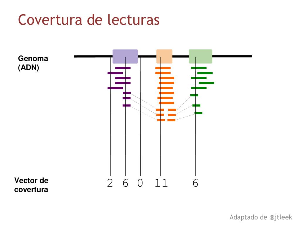Vector de covertura 2 6 0 11 6 Genoma (ADN) Cov...