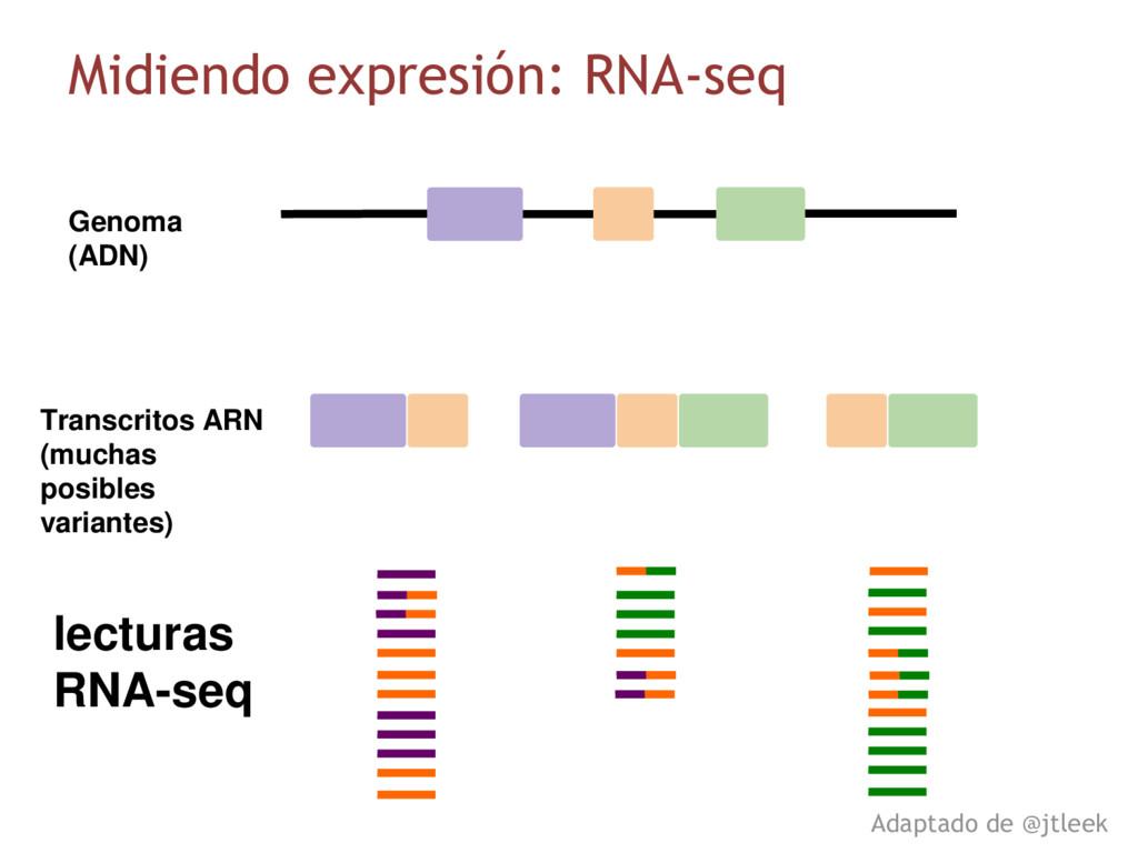 lecturas RNA-seq Genoma (ADN) Transcritos ARN (...