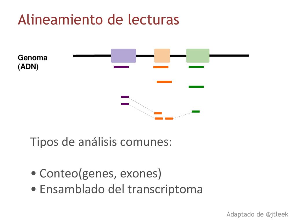 Genoma (ADN) Alineamiento de lecturas Adaptado ...
