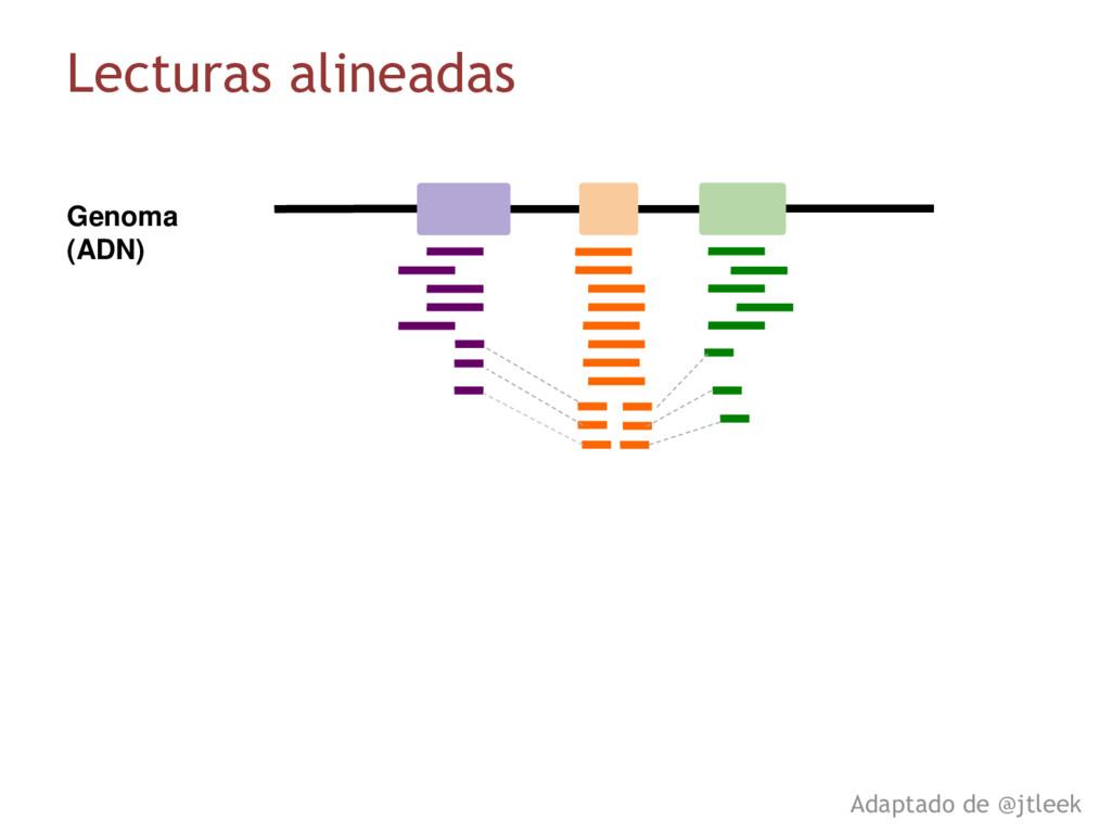 Genoma (ADN) Lecturas alineadas Adaptado de @jt...