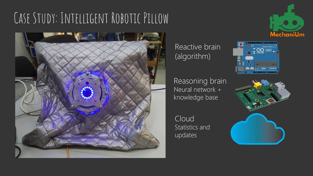 Case Study: Intelligent Robotic Pillow Reactive...