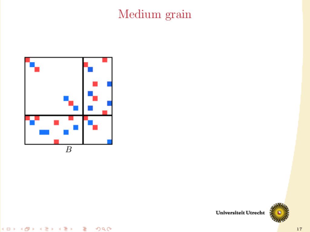 17 Medium grain B