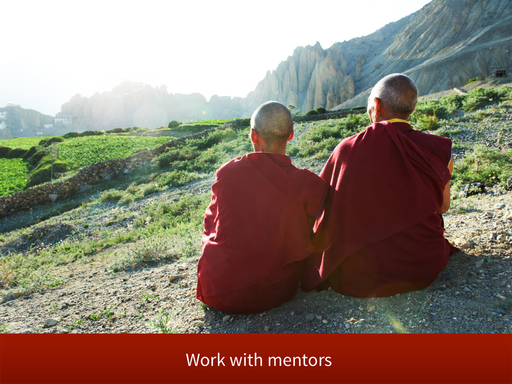 Work with mentors