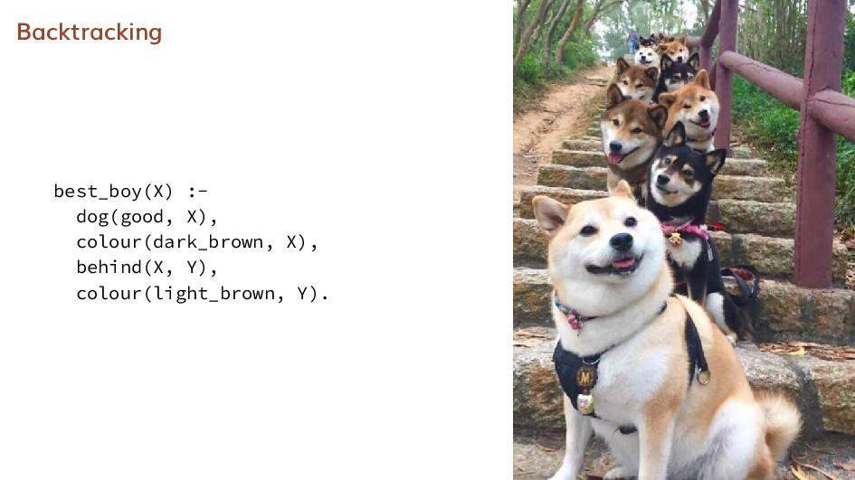 Backtracking best_boy(X) :- dog(good, X), colou...