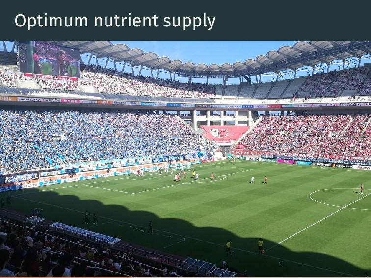Optimum nutrient supply