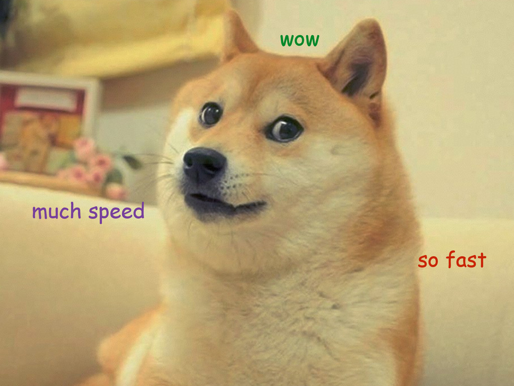 wow much speed so fast