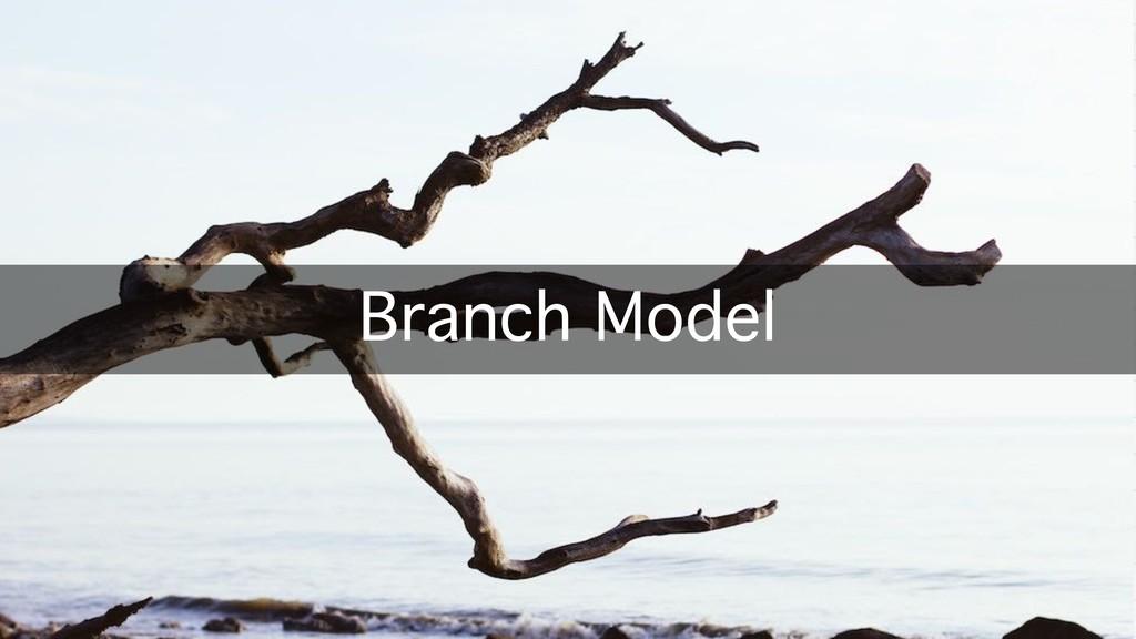 Branch Model