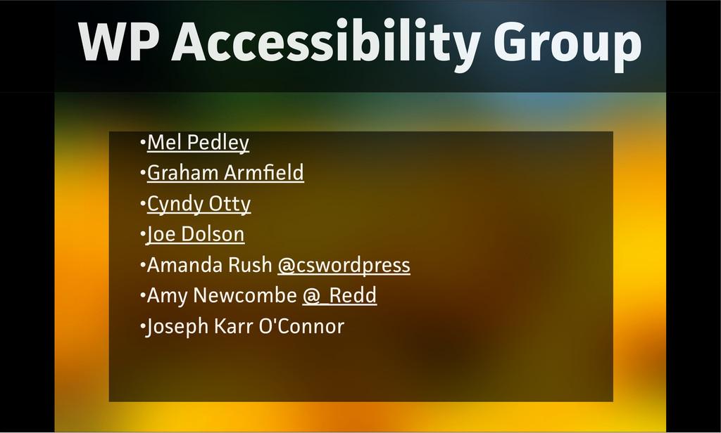 WP Accessibility Group •Mel Pedley •Gaham Armfi...