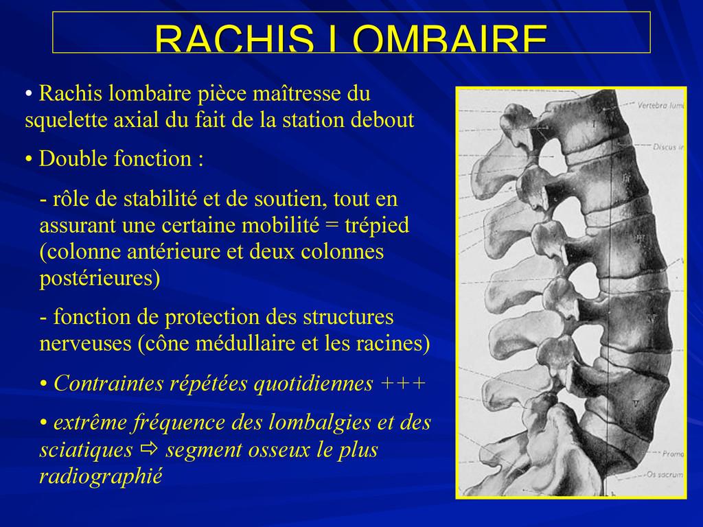 RACHIS LOMBAIRE • Rachis lombaire pièce maîtres...