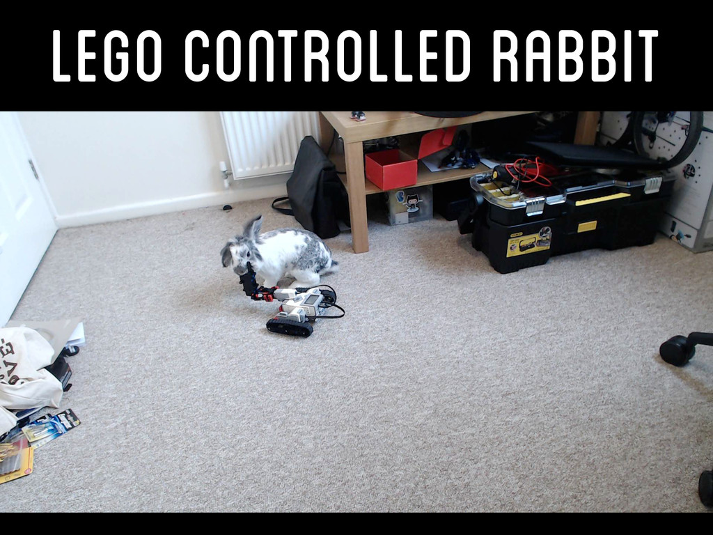 Lego Controlled Rabbit