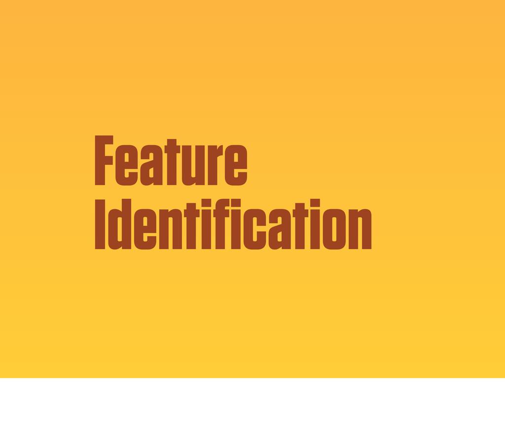 Feature Identification