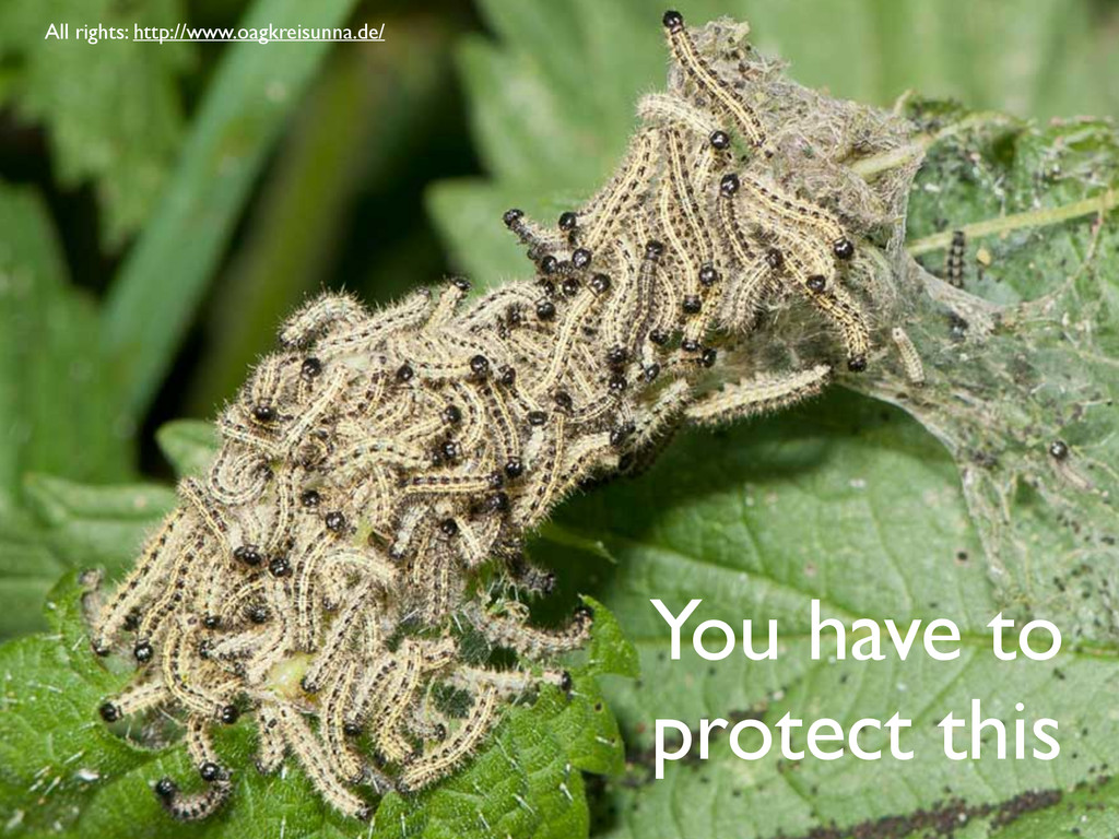 You have to protect this All rights: http://www...