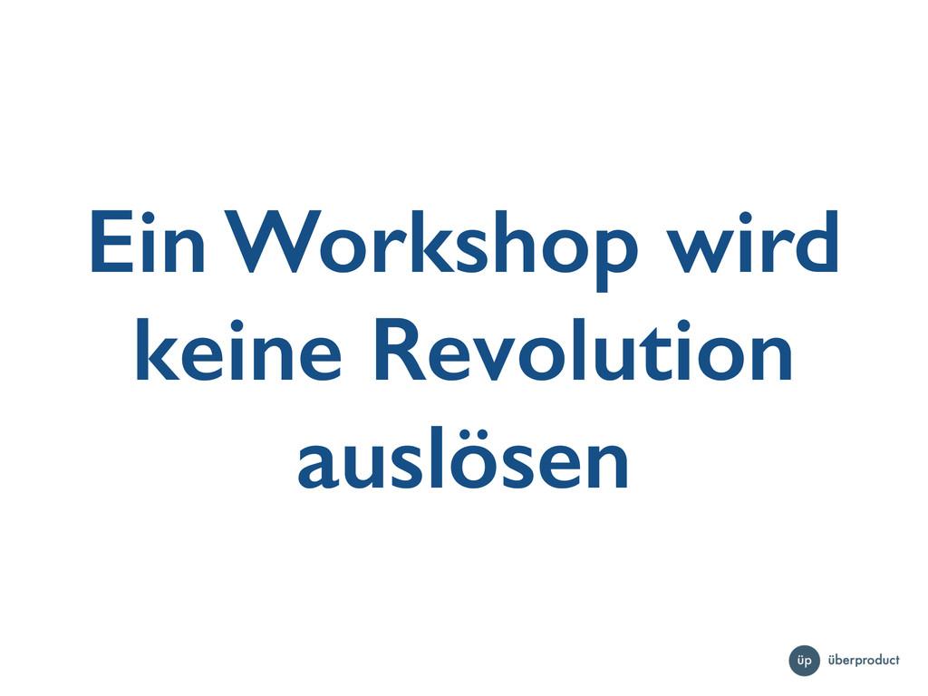 Ein Workshop wird keine Revolution auslösen