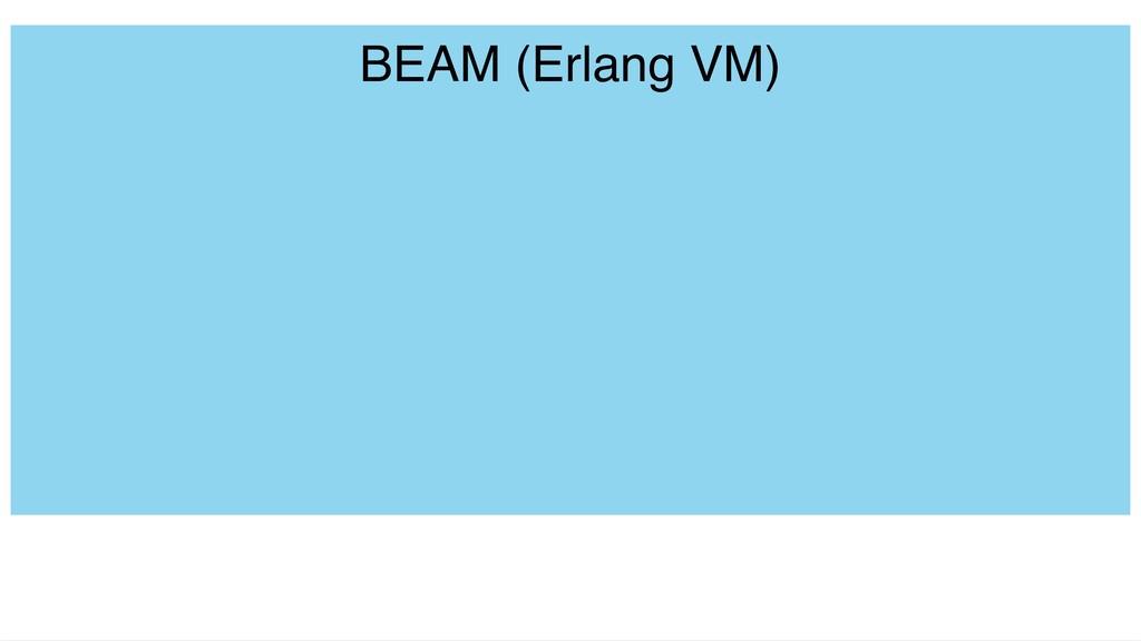 BEAM (Erlang VM)