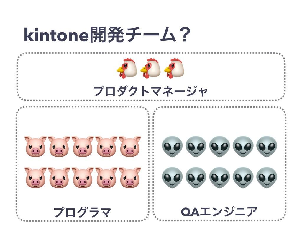 kintone։ൃνʔϜʁ   ϓϩάϥϚ   QAΤϯδχΞ  ϓϩμΫτϚωʔδϟ