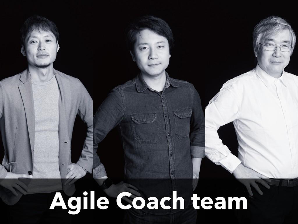 Agile Coach team
