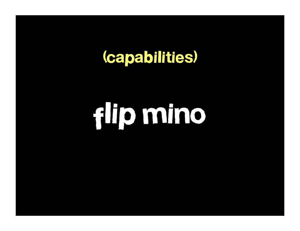flip mino (capabilities)