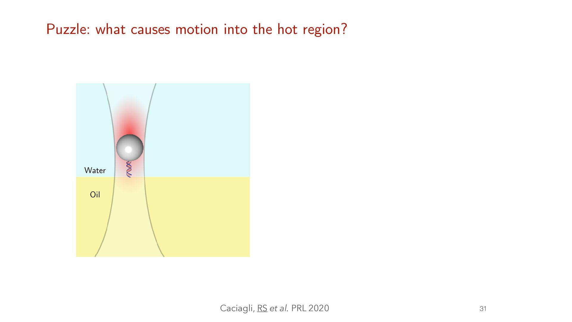 RS et al. JCP 2019, JOSS 2020 Active Brownian m...