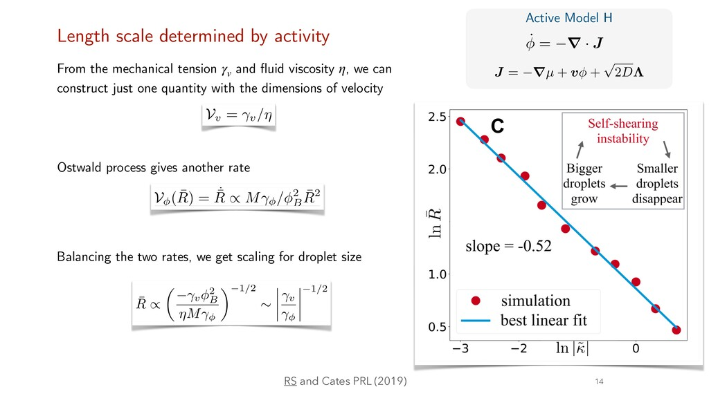 Length scale determined by activity SSI Ostwald...