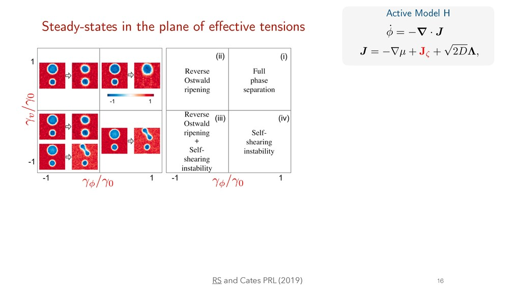 16 Steady-states in the plane of e ff ective te...