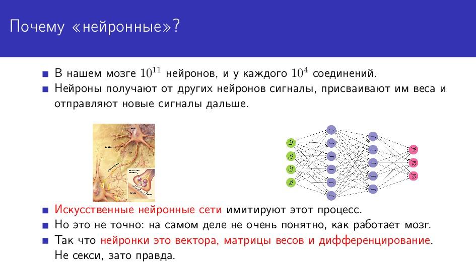Почему «нейронные»? В нашем мозге 1011 нейронов...