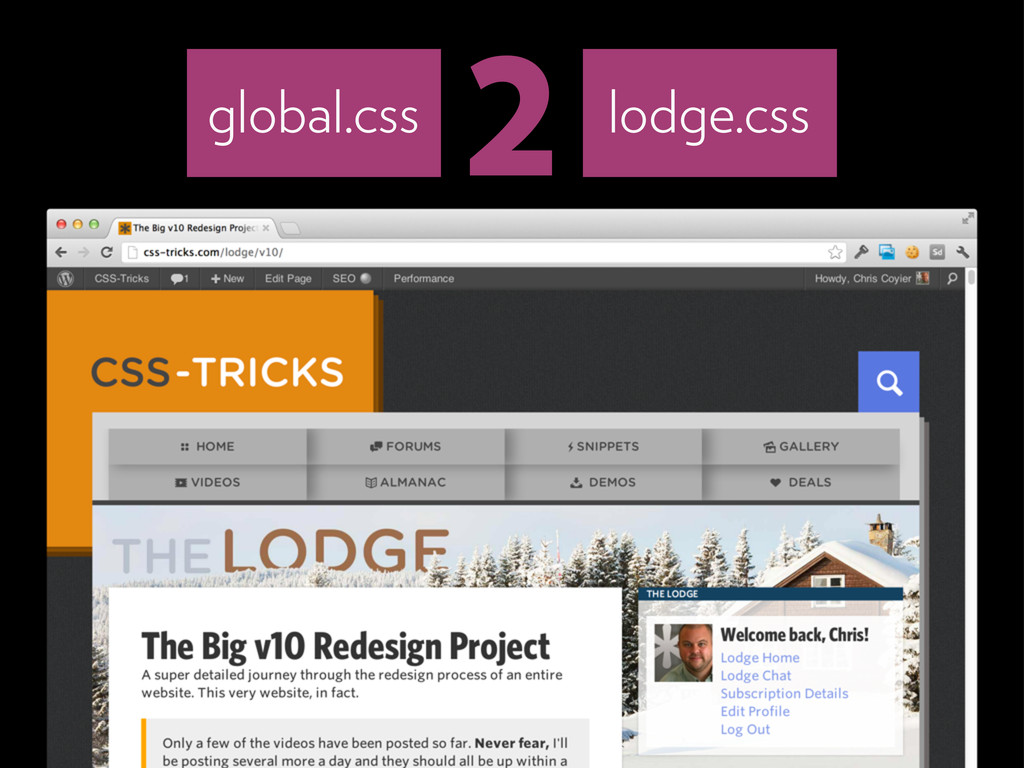 2 global.css lodge.css