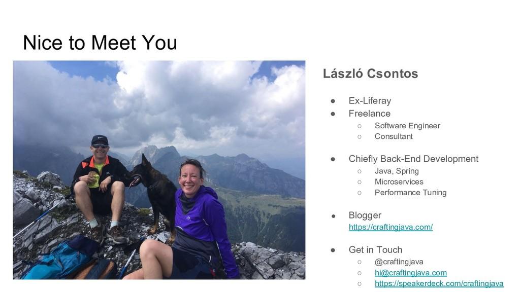 Nice to Meet You László Csontos ● Ex-Liferay ● ...