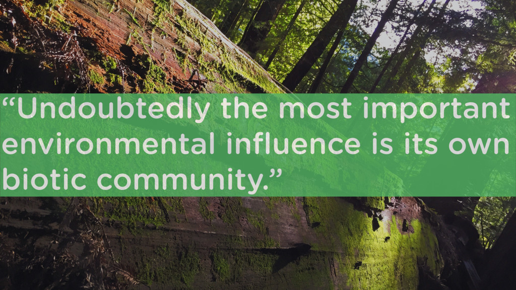 """""""Undoubtedly the most important environmental i..."""
