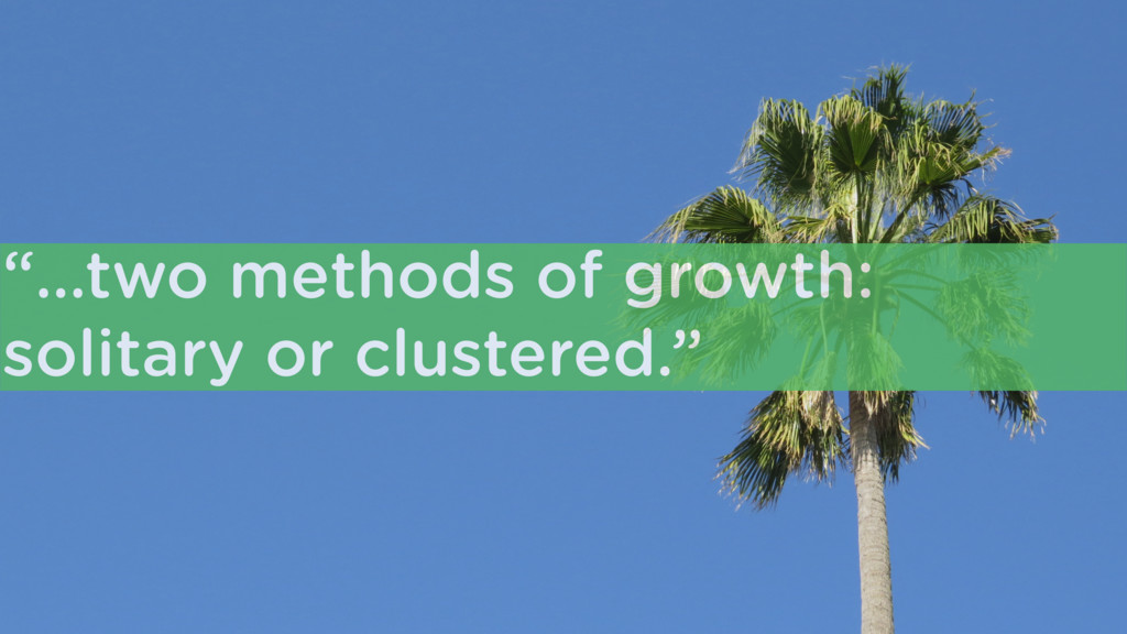 """""""…two methods of growth: solitary or clustered."""""""