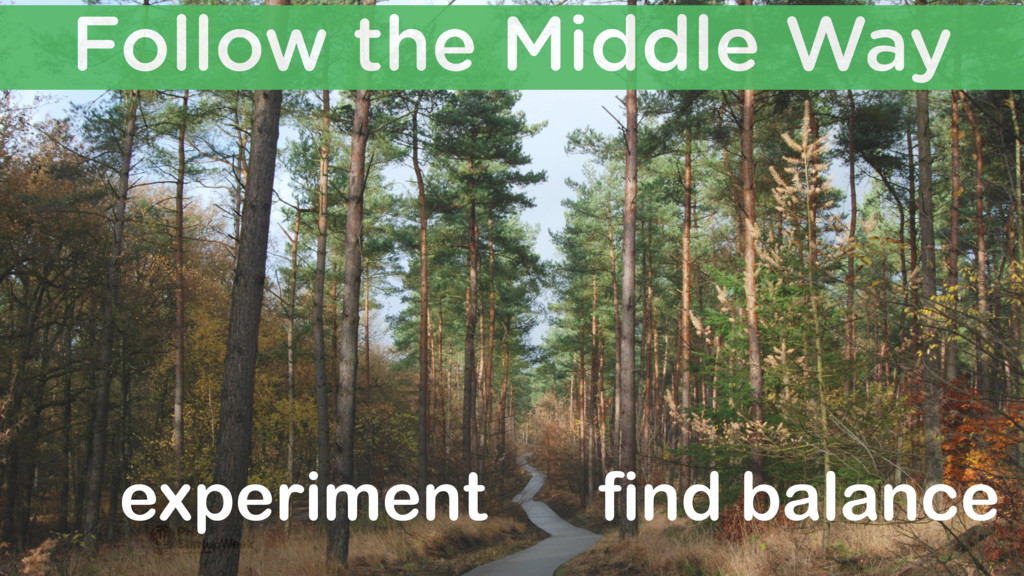 Follow the Middle Way experiment find balance