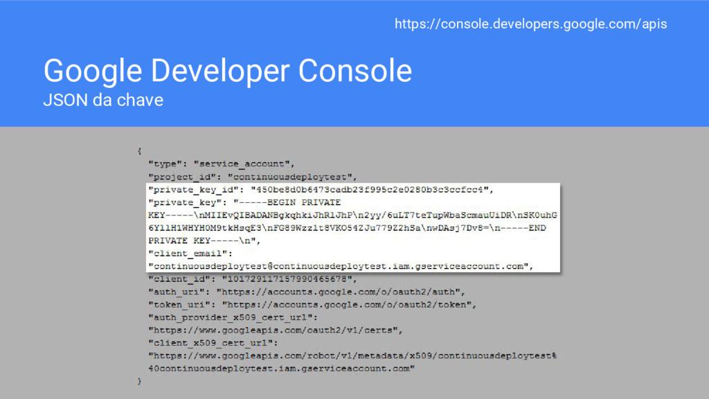 Google Developer Console JSON da chave https://...