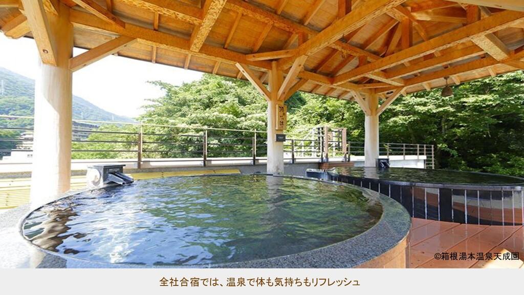 全社合宿では、温泉で体も気持ちもリフレッシュ  ©箱根湯本温泉天成園