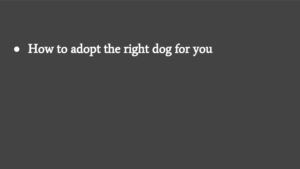 ● How to adopt the right dog for you