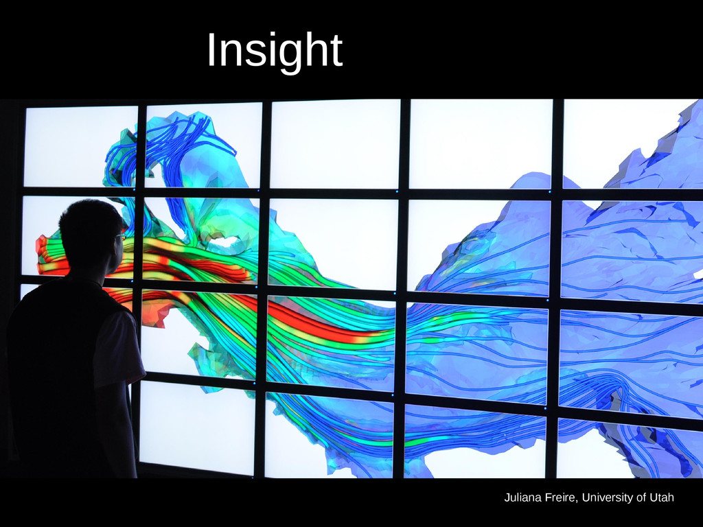 Efficient Insight Juliana Freire, University of...