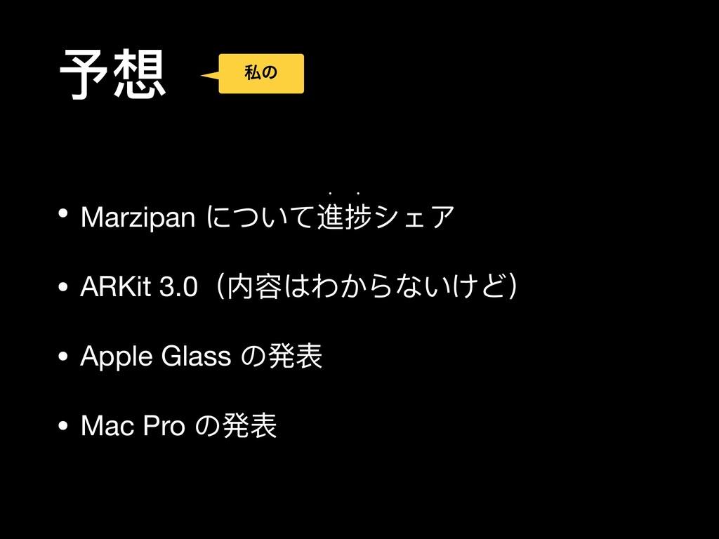 予想 • Marzipan について進捗シェア  w w • ARKit 3.0(内容はわから...
