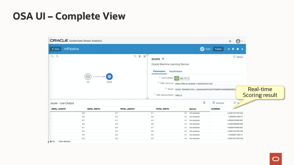 OSA UI – Complete View Real-time Scoring result
