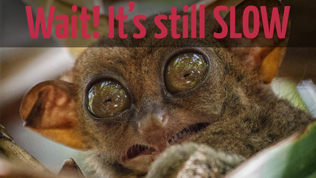 Wait! It's still slow. Wait! It's still SLOW