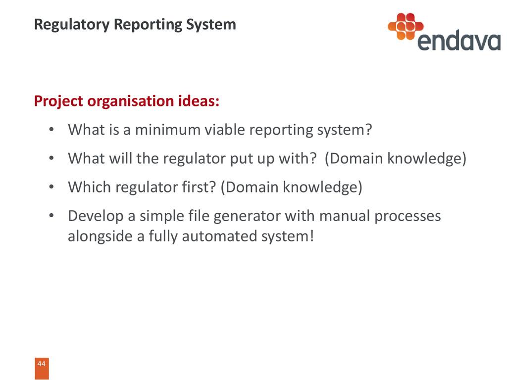 44 44 Regulatory Reporting System Project organ...