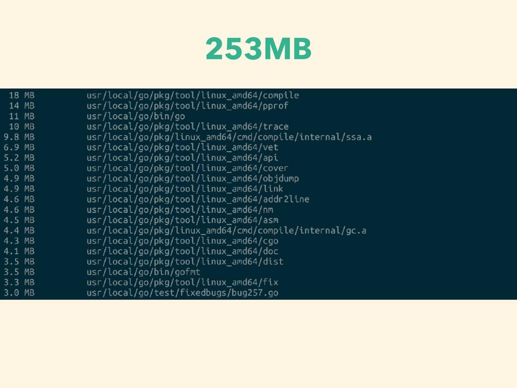 253MB